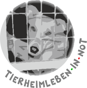 Tierheimleben in Not