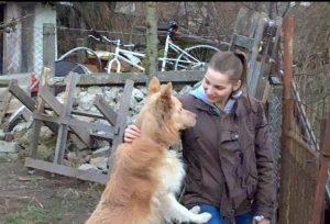Livia - Tierhilfe Zala