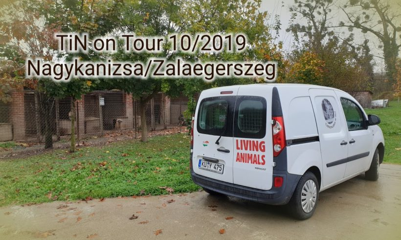 Reisebericht Nagykanizsa/Zalaegerszeg 29.10.2019-01.11.2019