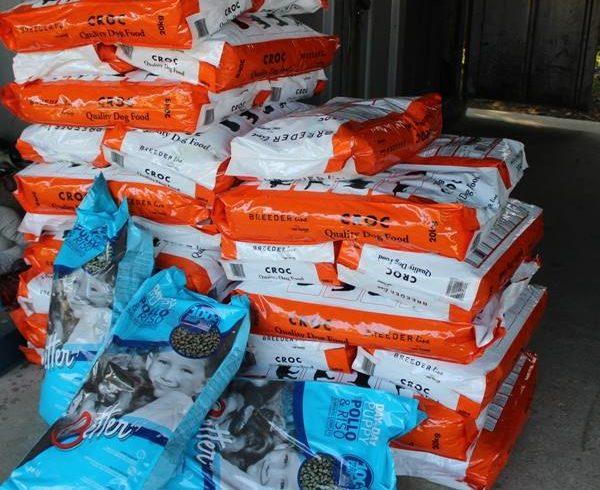 Das Tierheim in Nagykanizsa bekam heute 720 kg Hundefutter